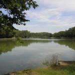 Le grand étang des Caillaux